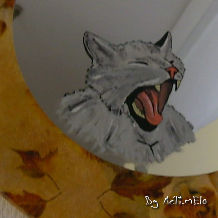 chat peint sur un miroir. Black Bedroom Furniture Sets. Home Design Ideas