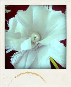 Broche fleur tissu