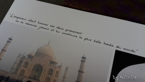 Agra_Taj Mahal 2